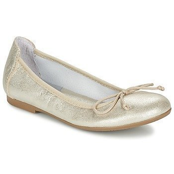Acebo's EBA ballerinat