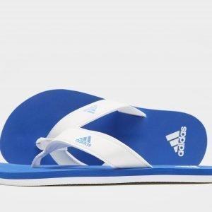 Adidas Beach Thong Flip Flops Sininen