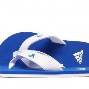Adidas Beach Thong Flip Flops Valkoinen