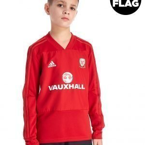 Adidas Fa Wales 2018/19 Training Top Punainen