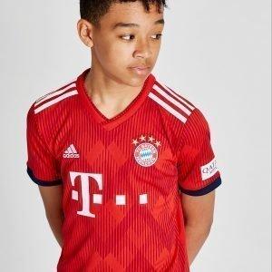 Adidas Fc Bayern Munich 2018/19 Kotipaita Punainen