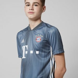 Adidas Fc Bayern Munich 2018/19 Third Shirt Harmaa