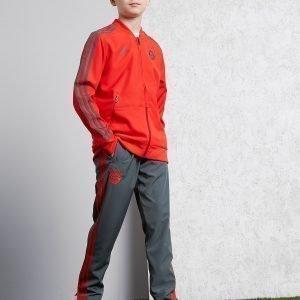 Adidas Fc Bayrn Munich 18 / 19 Presentation Pants Harmaa