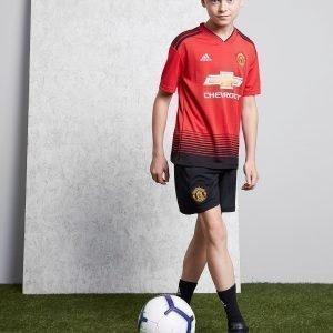Adidas Manchester United Fc 2018/19 Kotishortsit Musta