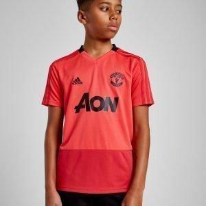 Adidas Manchester United Fc Training Shirt Vaaleanpunainen