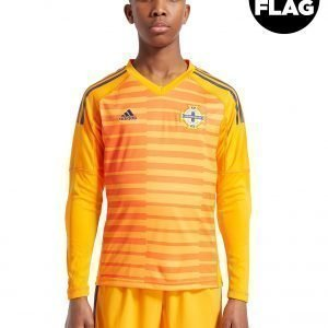 Adidas Northern Ireland 18 / 19 Home Goal Keeper Shirt Jnr Oranssi