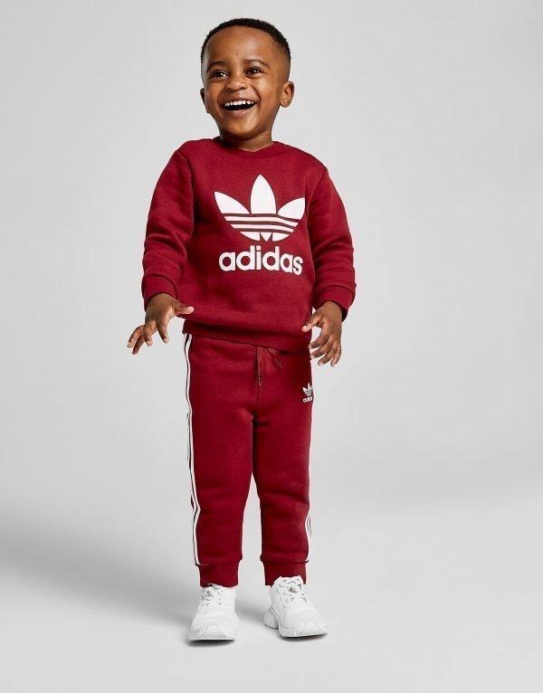 Adidas Originals Adicolour Crew Verryttelypuku Punainen