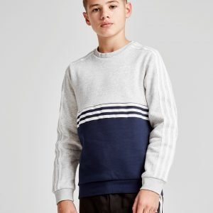 Adidas Originals Authentic Colour Block Crew Sweatshirt Harmaa