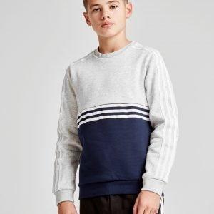 Adidas Originals Authentic Colour Block Crew Sweatshirt Harmaa