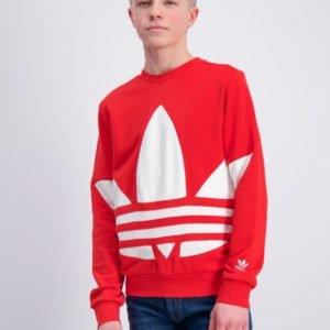 Adidas Originals Bg Trefoil Crew Neule Punainen
