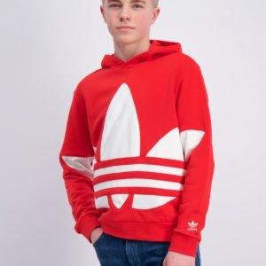 Adidas Originals Bg Trefoil Hood Huppari Punainen