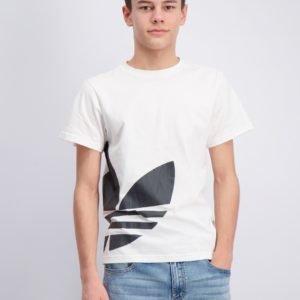 Adidas Originals Big Trefoil Tee T-Paita Valkoinen