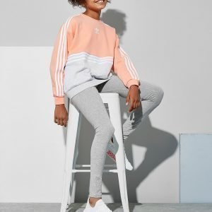 Adidas Originals Girls' Authentic Colour Block Crew Sweatshirt Jnr Coral / White / Grey