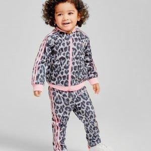 Adidas Originals Girls' Superstar Verryttelypuku Harmaa