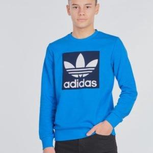 Adidas Originals Trefoil Crew Neule Kirjava
