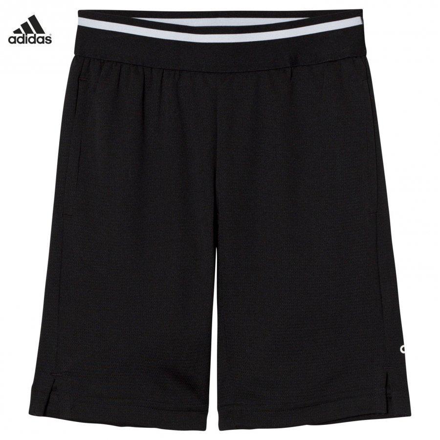 Adidas Performance Black Training Cool Shorts Urheilushortsit