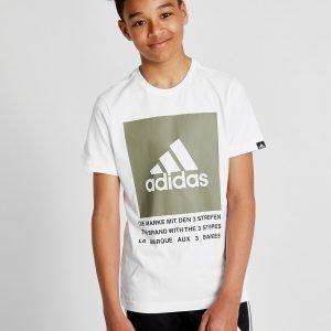 Adidas Performance Box T-Paita Valkoinen