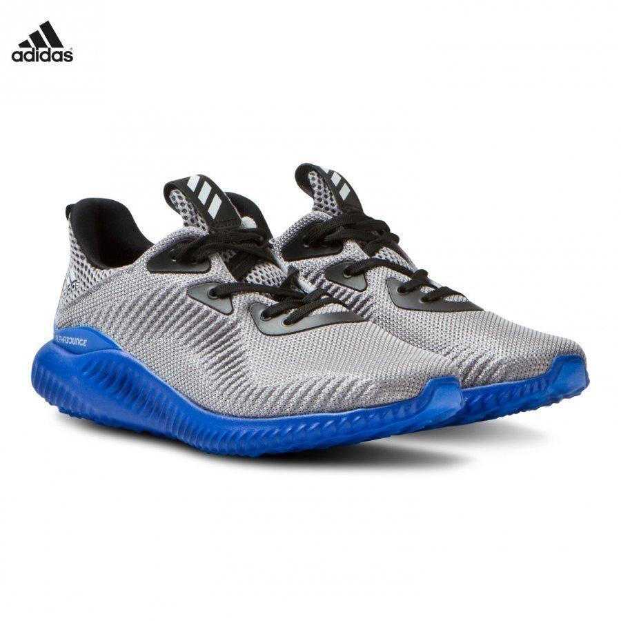 Adidas Performance Grey Alphabounce Junior Trainers Urheilukengät