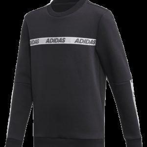 Adidas Sid Br Crew Pusero