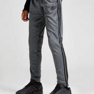 Adidas Tango Verryttelyhousut Harmaa
