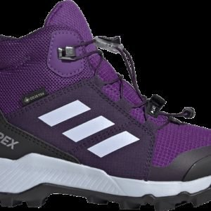 Adidas Terrex Mid Gtx Varsikengät