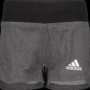 Adidas Tr Chill Short Treenishortsit