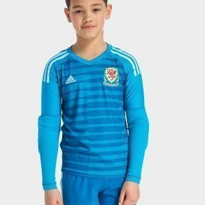 Adidas Wales 2018/19 Home Goalkeeper Shirt Aqua