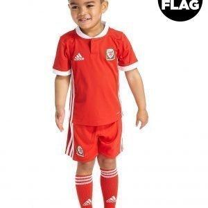 Adidas Wales 2018/19 Home Kit Punainen