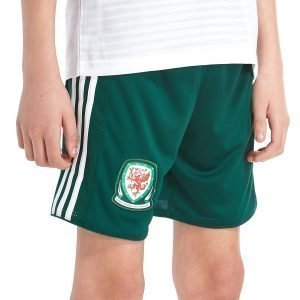 Adidas Wales Away 2018/19 Shorts Vihreä
