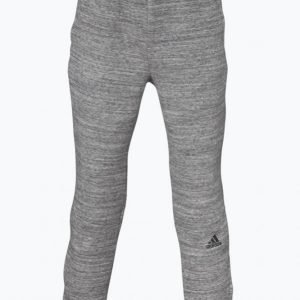 Adidas Yb Co Zne Pant Collegehousut