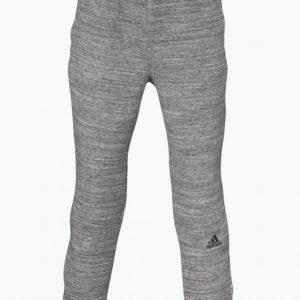 Adidas Yb Co Zne Pant Collegehousut