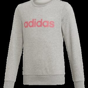 Adidas Yg E Lin Sweat