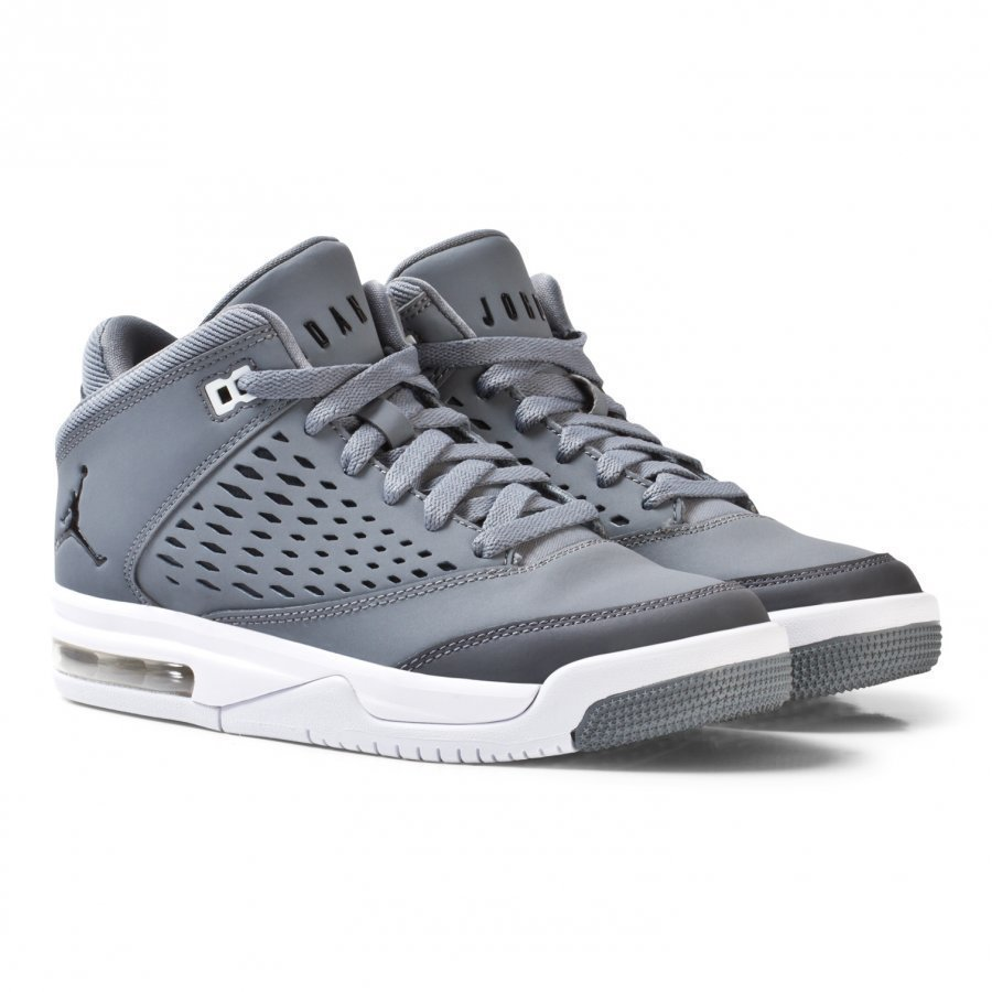 Air Jordan Flight Origin 4 Sneakers Grey Lenkkarit