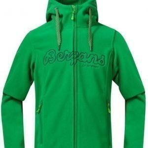 Bergans Huppari Fleece Youth Green/Navy