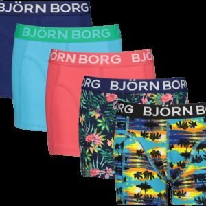 Björn Borg Sunset Mini & Exotic Sammy Bokserit