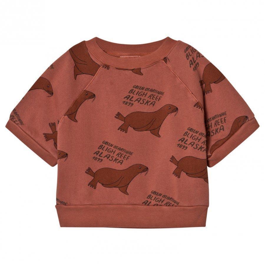 Bobo Choses Short Sleeved Sweatshirt Green Otariinae T-Paita
