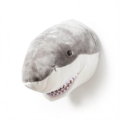 Brigbys Haipehmolelun Pää Seinälle Hai