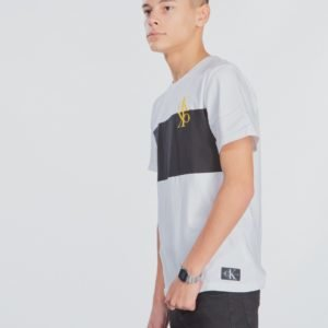 Calvin Klein Colour Block Monogram T Shirt T-Paita Valkoinen