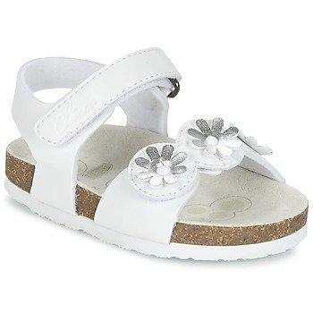 Chicco HELIS sandaalit