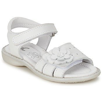 Citrouille et Compagnie BADEKA sandaalit