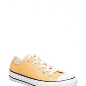 Converse All Star Seasonal