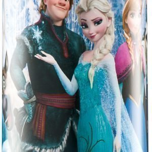 Disney Frozen Termospullo terästä 500 ml