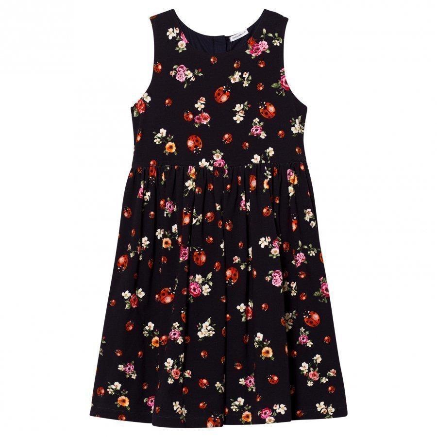 Dolce & Gabbana Navy Floral And Lady Bird Print Interlock Sleeveless Dress Mekko
