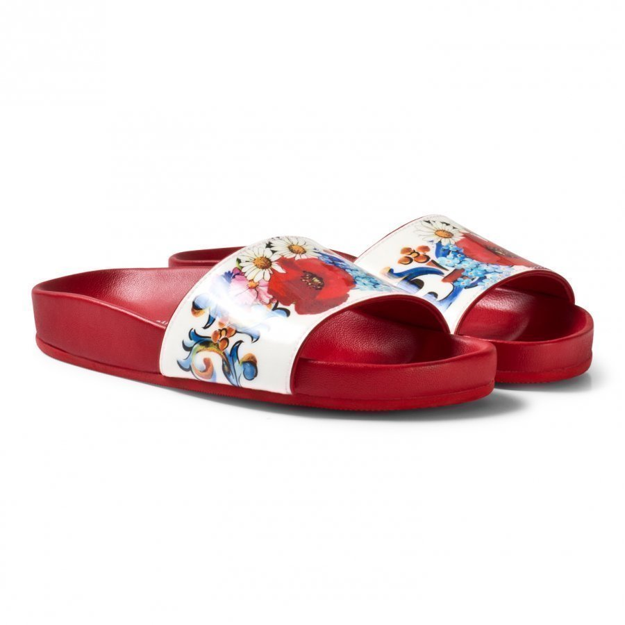 Dolce & Gabbana Pink And Floral Slides Slip On Sandaalit