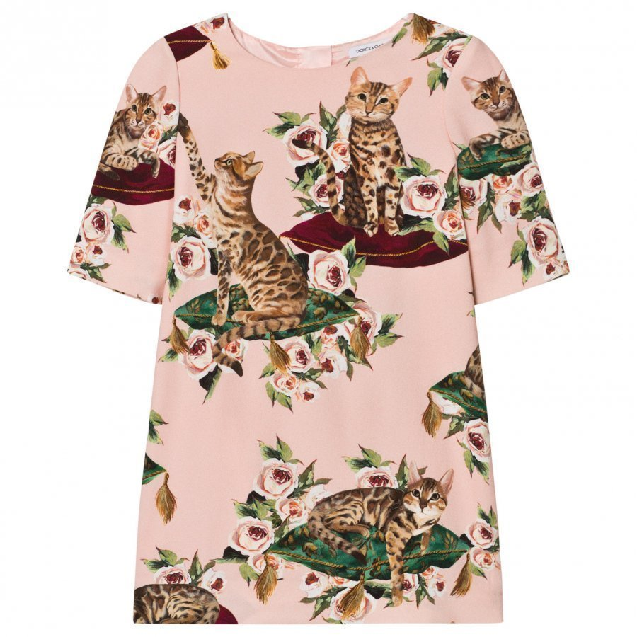 Dolce & Gabbana Pink Zambia Print Dress Juhlamekko