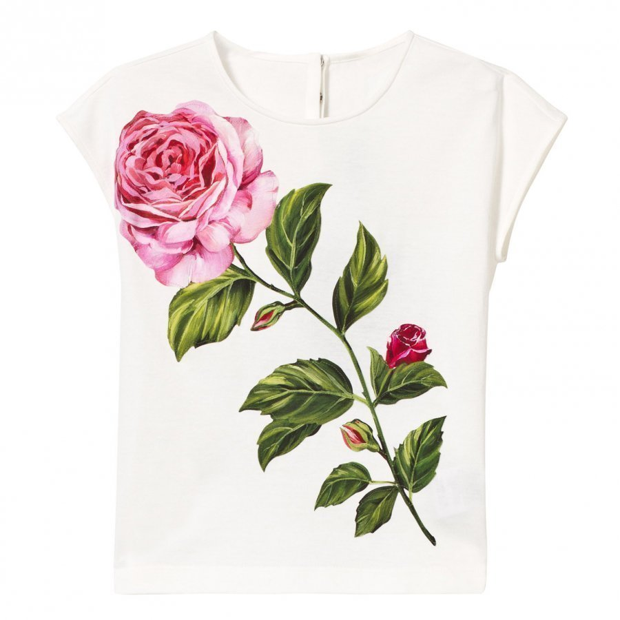 Dolce & Gabbana White Rose Embroidered And Print Tee T-Paita