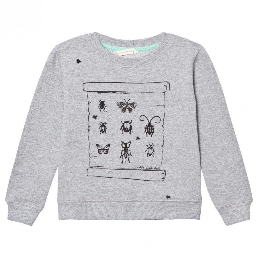 Ebbe Kids Sacke College Sweater Grey Melange Oloasun Paita
