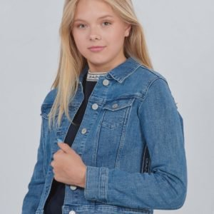 Gant D1. Gant Archive Stripe Jacket Takki Sininen