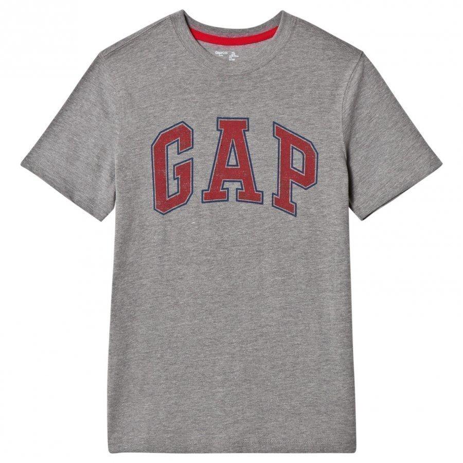 Gap V-New Arch Scr B30 Grey Heather T-Paita