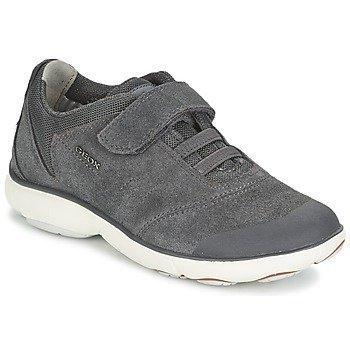 Geox NEBULA BOY matalavartiset kengät